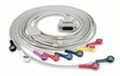 EdanUSA 10-Lead Patient Cable with Snap Ends #01.57.107582