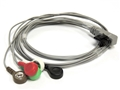 Northeast Monitoring DR200/300 Compatible Patient Cable with Snap Ends